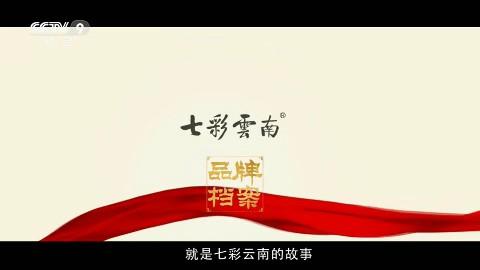 城市形象——七彩云南故事CCTV-9_央视广告片