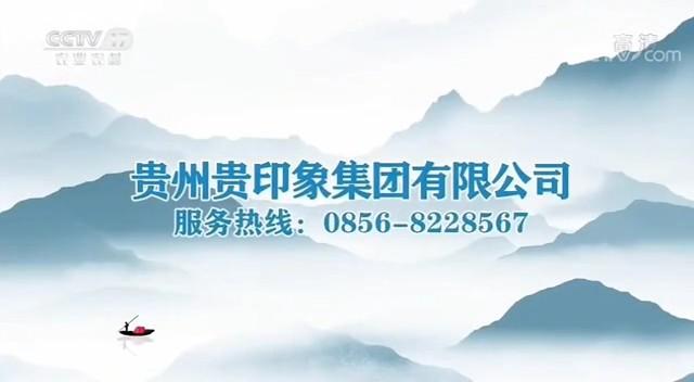 食品类——贵印象CCTV-17_央视广告片